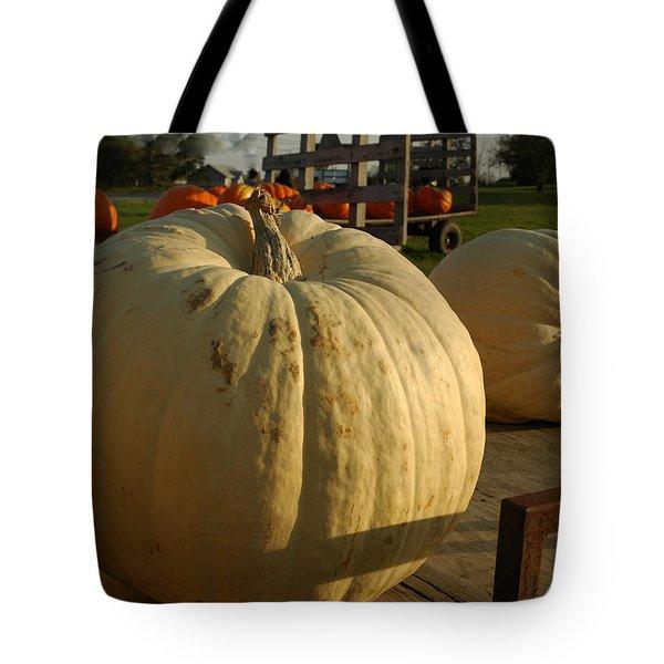 Ghost Pumpkin Tote Bag by LeeAnn McLaneGoetz McLaneGoetzStudioLLCcom