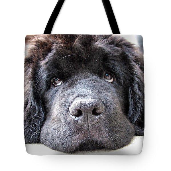 Glum Tote Bag by Gary Yates