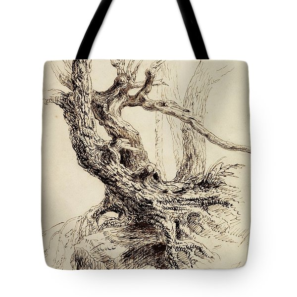 Gnarled Tree Trunk Tote Bag by Thomas Cole