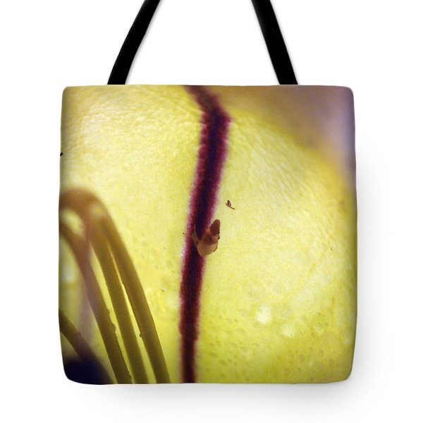 Golden Cup Flowe Study 2 Tote Bag by Jennifer  Bright