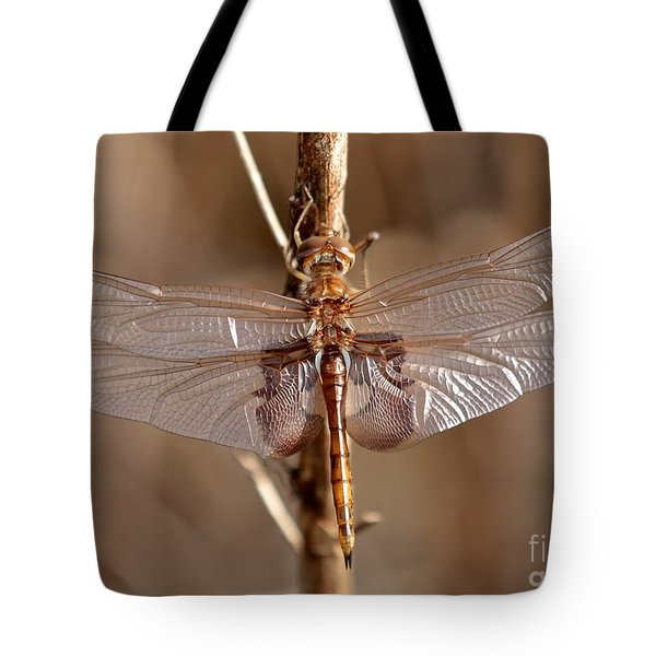 Golden Dragonfly Wings Tote Bag by Carol Groenen