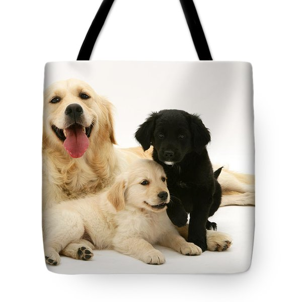 Golden Retriever And Puppies Tote Bag by Jane Burton