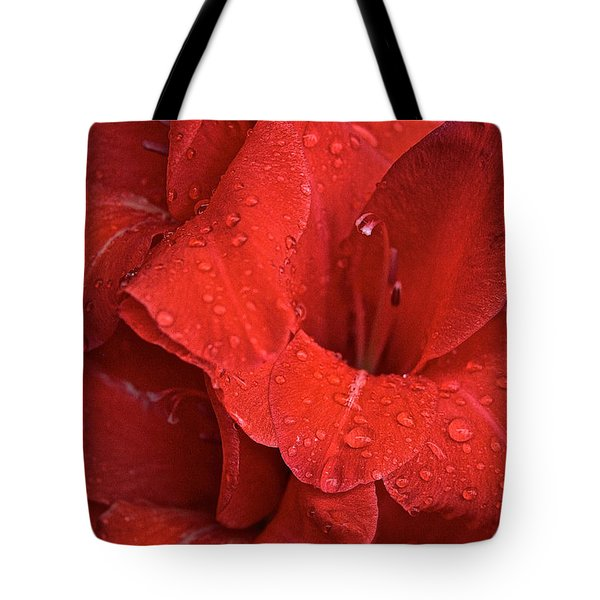 Gorgeous Glads Tote Bag by Susan Herber