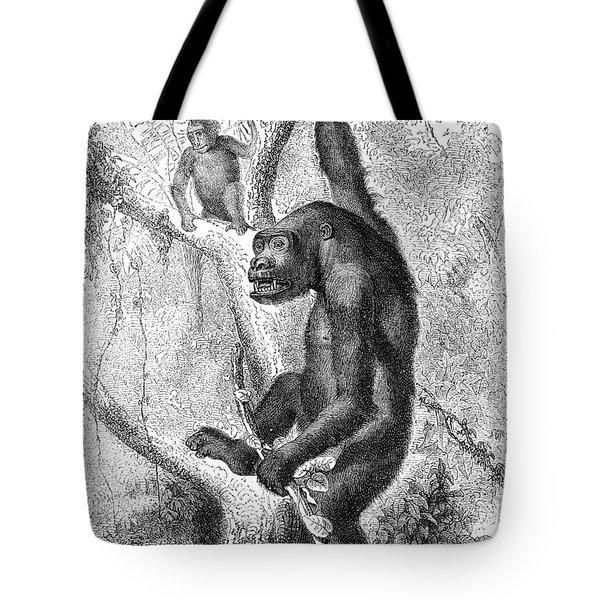 Gorilla Tote Bag by Granger