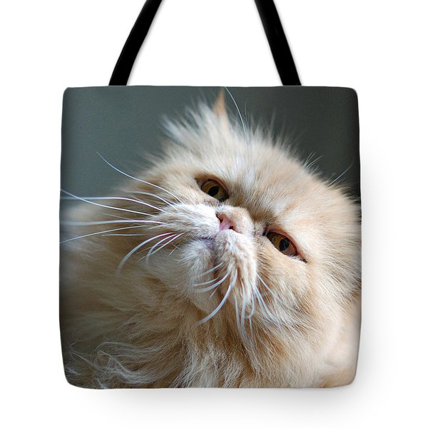 Gracie Tote Bag by Lisa  Phillips