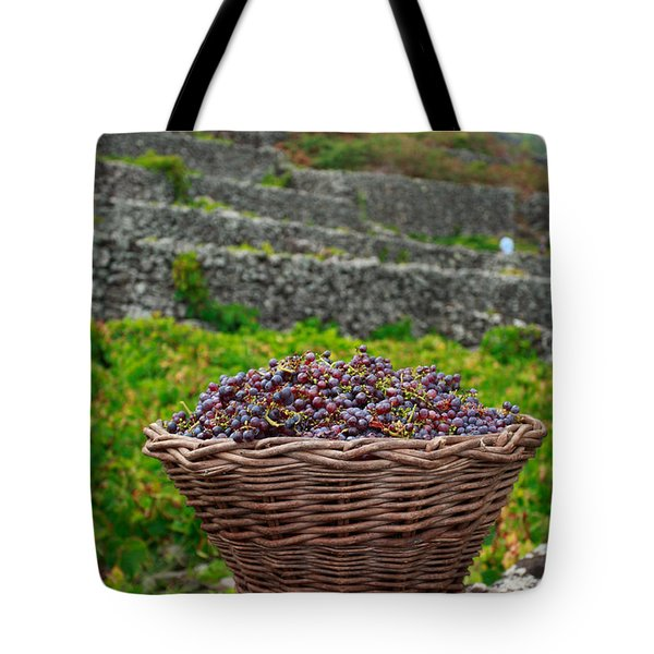 Grape harvest Tote Bag by Gaspar Avila
