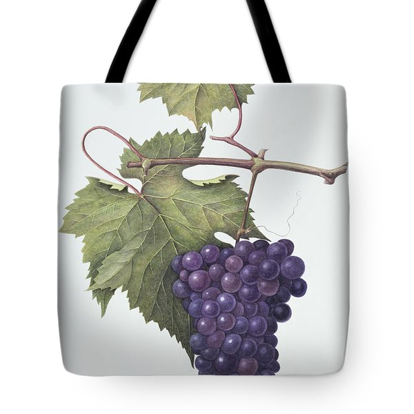 Grapes  Tote Bag by Margaret Ann Eden