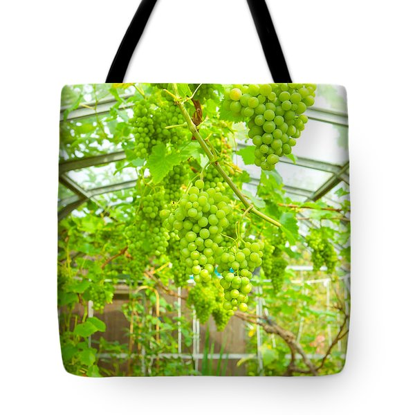 Grapevine Tote Bag by Tom Gowanlock