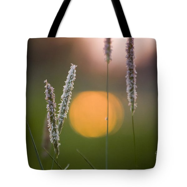 Grass Blooming Tote Bag by Heiko Koehrer-Wagner