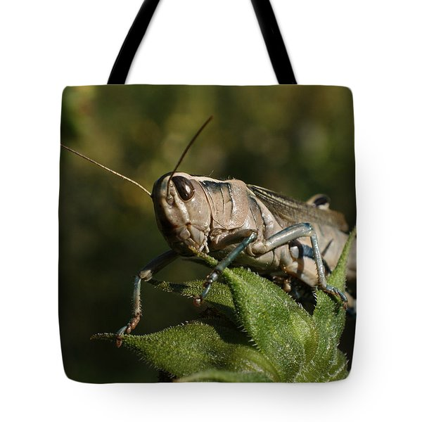 Grasshopper 2 Tote Bag by Ernie Echols