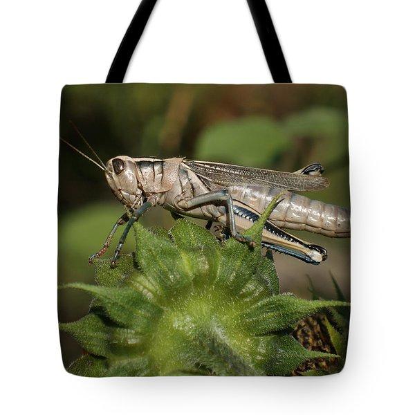 Grasshopper Tote Bag by Ernie Echols