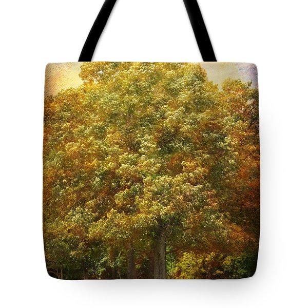 Graves Grove Tote Bag by Jai Johnson