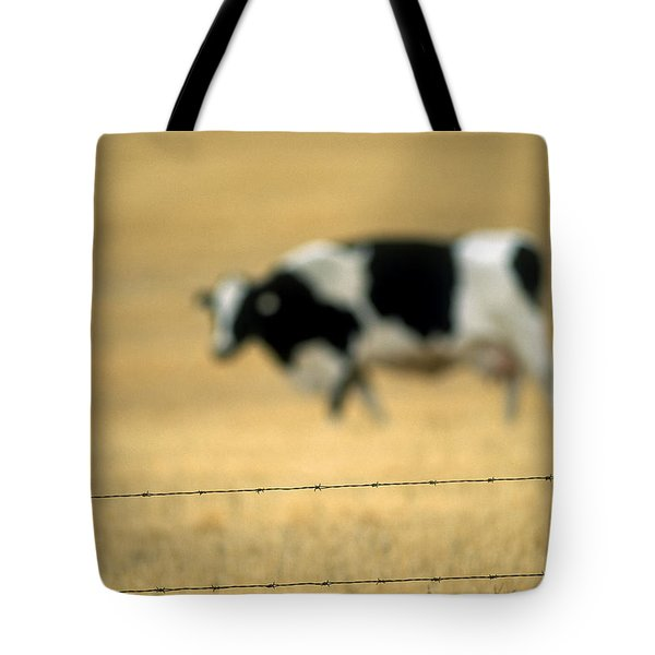 Grazing Cow, Alberta, Canada Tote Bag by Ron Watts