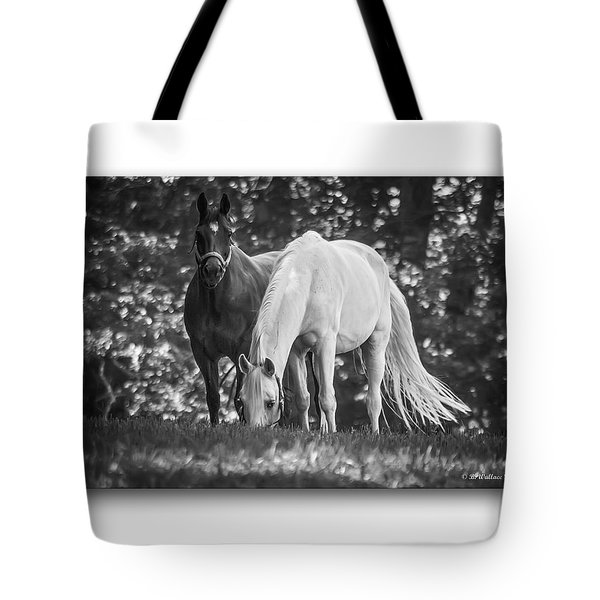 Grazing In Black And White Tote Bag by Brian Wallace