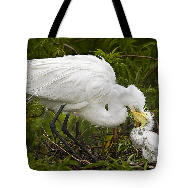 Great Egret and Chick Tote Bag by Susan Candelario