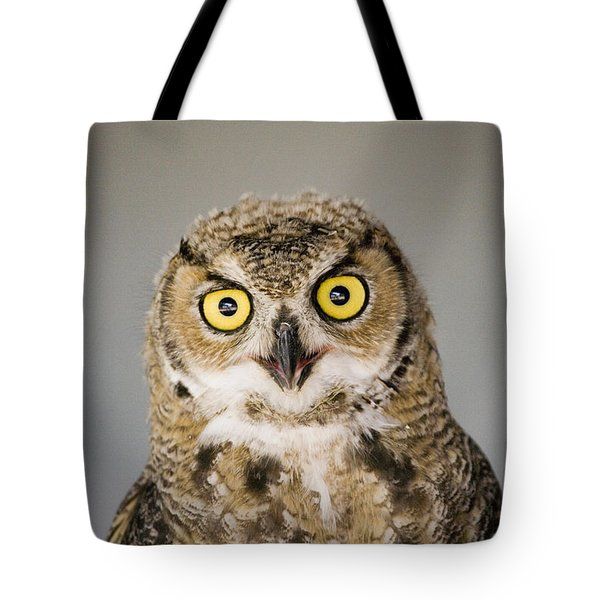 Great Horned Owl Tote Bag by Henry Georgi Photography Inc