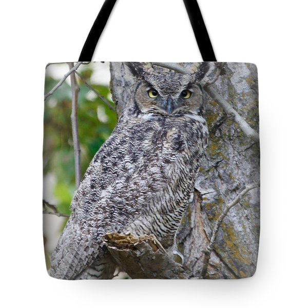 Great Horned Owl II Tote Bag by Athena Mckinzie