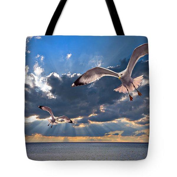 Greek Gulls With Sunbeams Tote Bag by Meirion Matthias