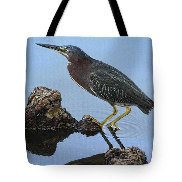 Green Heron Visiting The Pond Tote Bag by Deborah Benoit