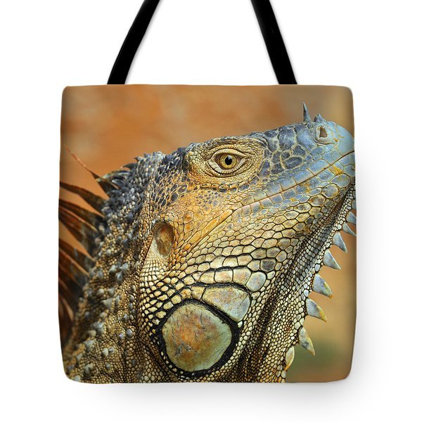 Green Iguana Tote Bag by Tony Beck