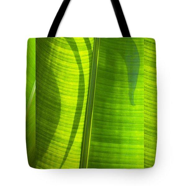 Green Leaf Tote Bag by Setsiri Silapasuwanchai