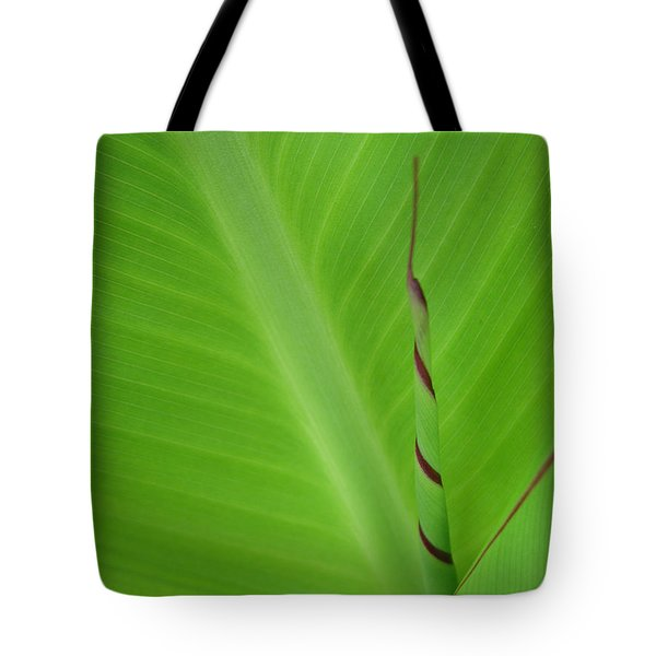 Green Leaf With Spiral New Growth Tote Bag by Nikki Marie Smith
