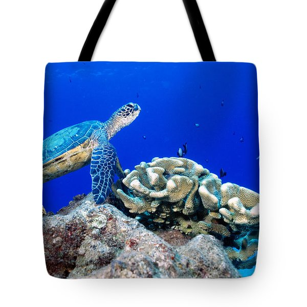 Green Sea Turtle Tote Bag by Andrew G Wood and Photo Researchers