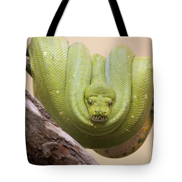 Green Tree Python Tote Bag by Suzanne Gaff