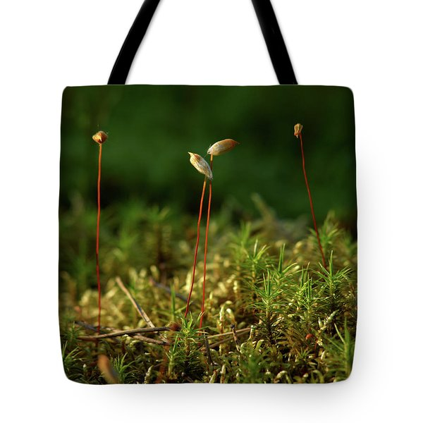 Haircap Moss Tote Bag by Jouko Lehto