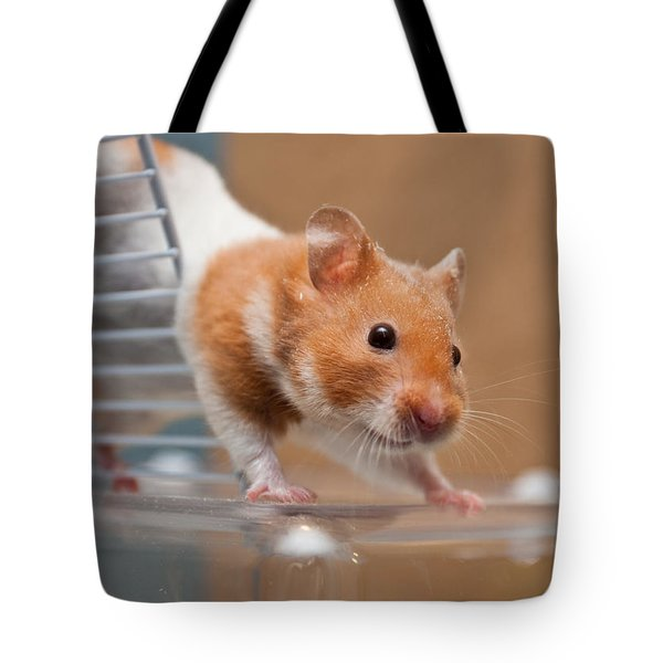 Hamster Tote Bag by Tom Gowanlock