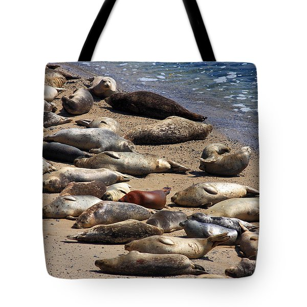 Harbor Seals Sunbathing On The Beach . 40d7553 Tote Bag by Wingsdomain Art and Photography