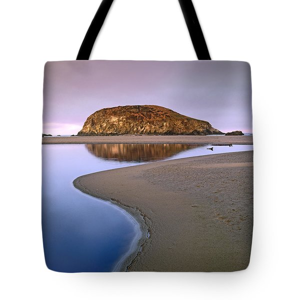 Harris Beach State Park Oregon Tote Bag by Tim Fitzharris