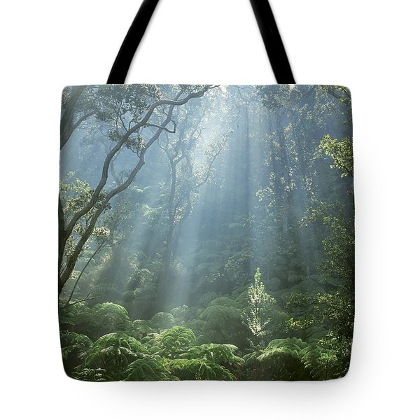 Hawaiian Rainforest Tote Bag by Gregory Dimijian MD