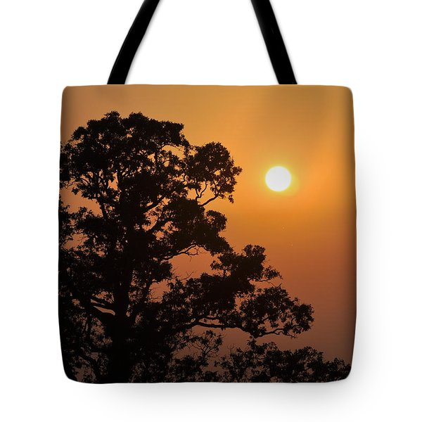 Hazy Sunset Tote Bag by Marty Koch