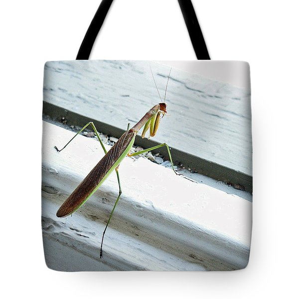 Heading Out Tote Bag by Lisa Phillips