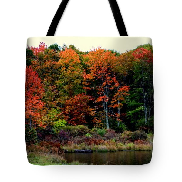 Hidden Valley Lake Tote Bag by Karen Wiles