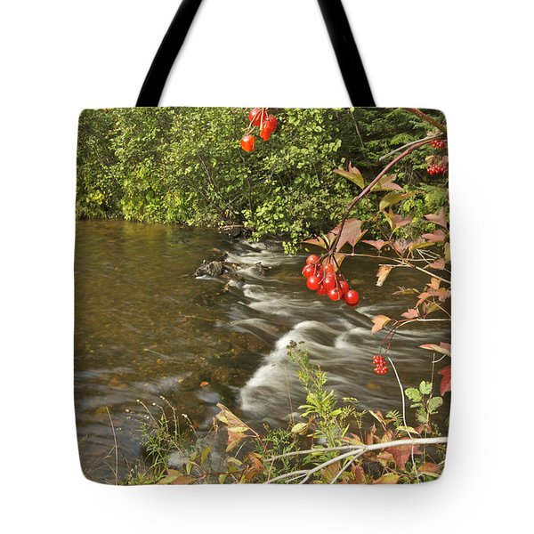 High Bush Cranberry 7823 Tote Bag by Michael Peychich