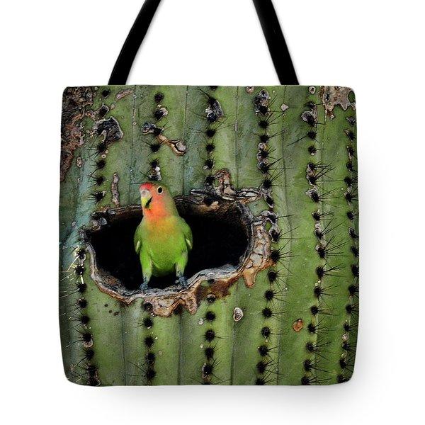 Home Sweet Home  Tote Bag by Saija  Lehtonen