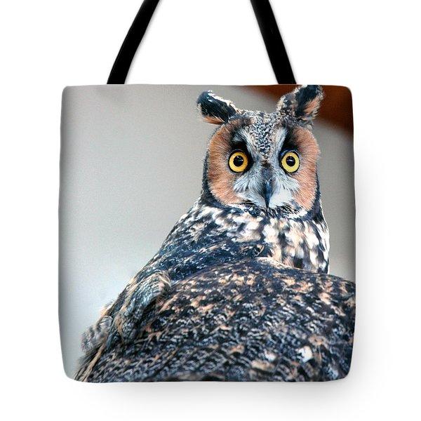 Hooter  Tote Bag by LeeAnn McLaneGoetz McLaneGoetzStudioLLCcom