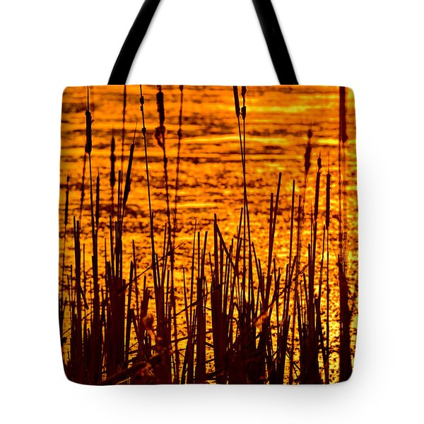 Horicon Cattail Marsh Wisconsin Tote Bag by Steve Gadomski
