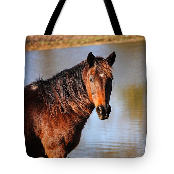 Horse By The Water Tote Bag by Jai Johnson