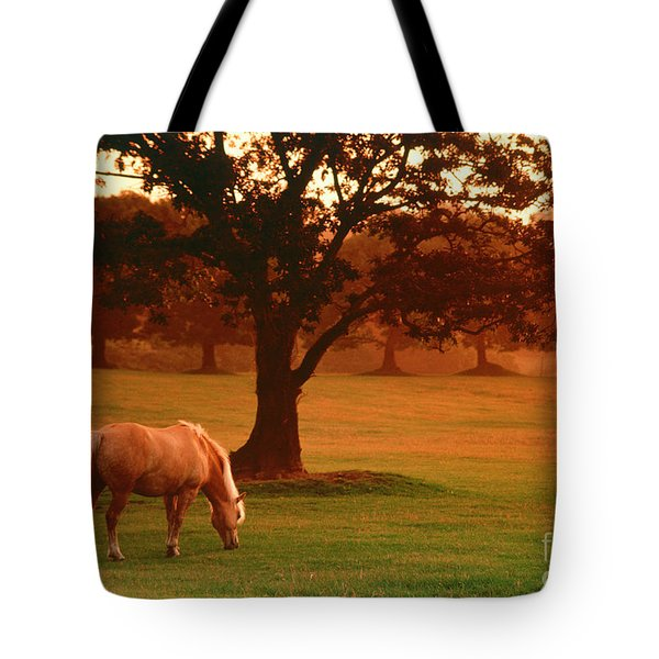 Horse Tote Bag by Carl Purcell and Photo Researchers