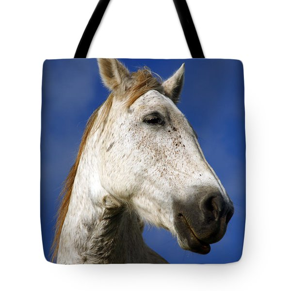 Horse Portrait Tote Bag by Gaspar Avila