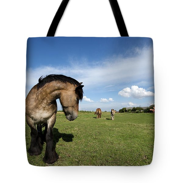 Horsepower Tote Bag by Robert Lacy