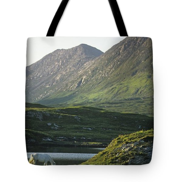 Horses Grazing On A Landscape, County Tote Bag by The Irish Image Collection