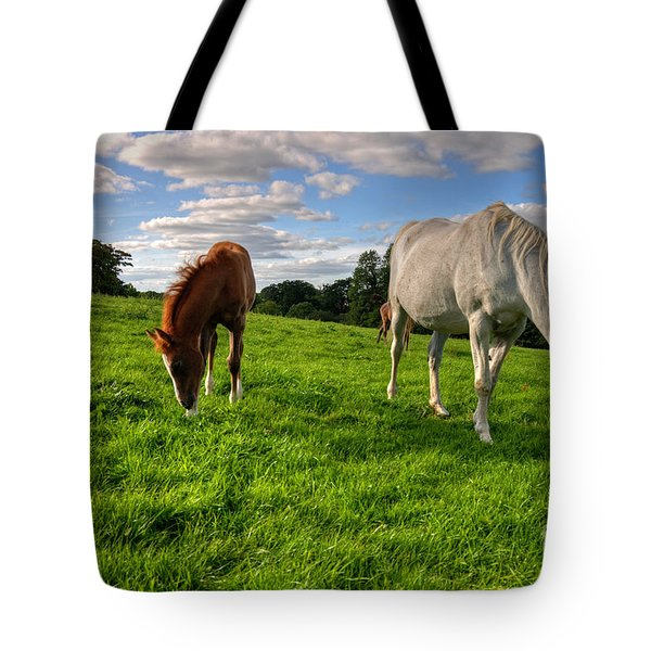 Horses Grazing Tote Bag by Rob Hawkins