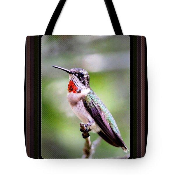 Hummingbird Card Tote Bag by Travis Truelove