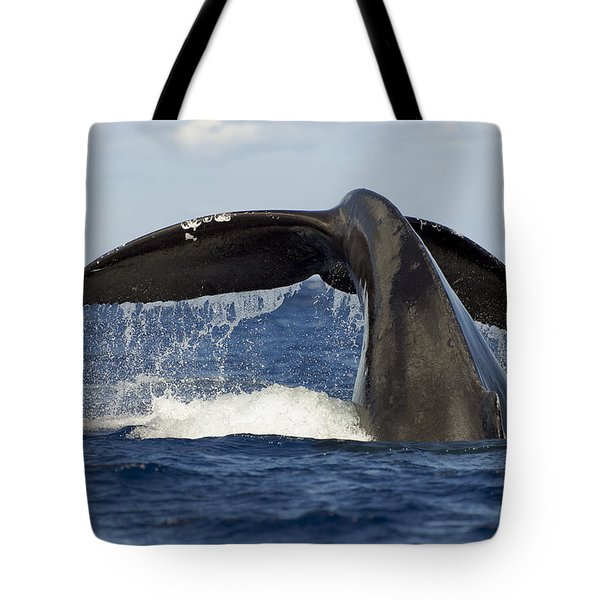 Humpback Tail Tote Bag by Dave Fleetham