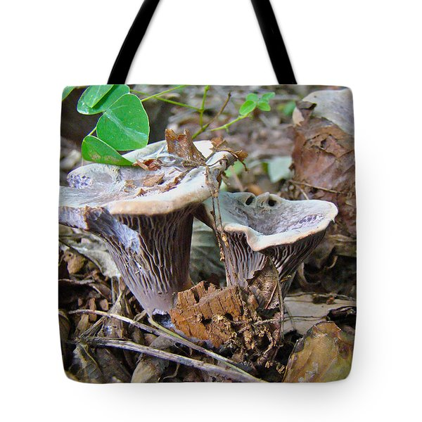 Hygrophorus Caprinus Mushrooms Tote Bag by Mother Nature