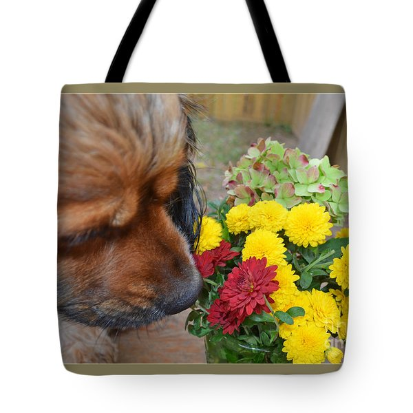 I Like The Red One  Tote Bag by Debbie Portwood